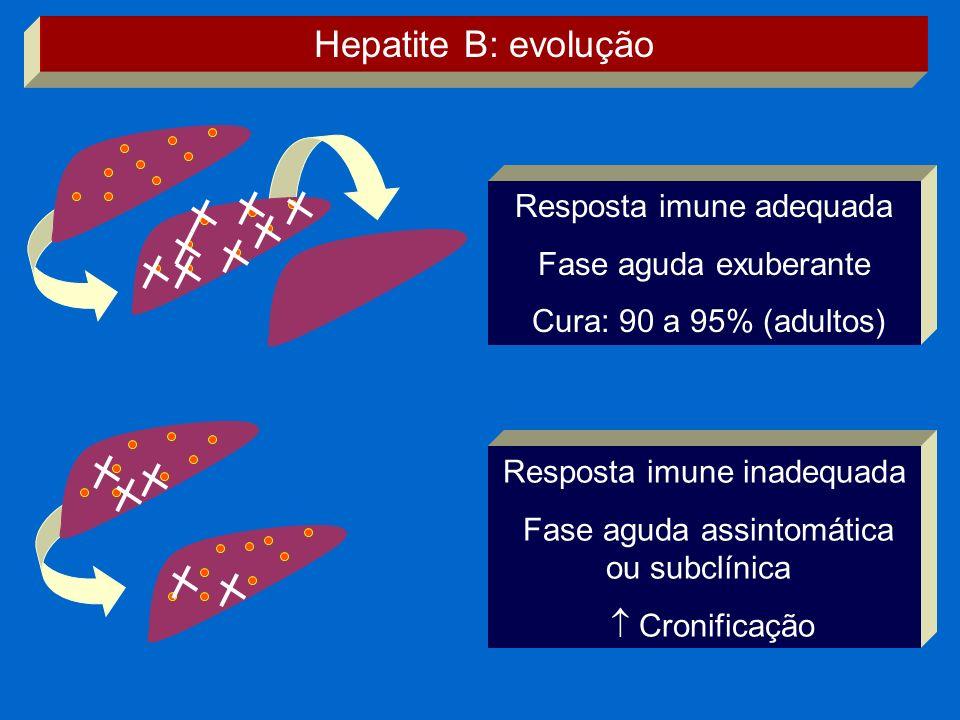 Resposta imune adequada Fase aguda exuberante Cura: 90 a 95% (adultos) Resposta imune inadequada Fase aguda assintomática ou subclínica Cronificação H