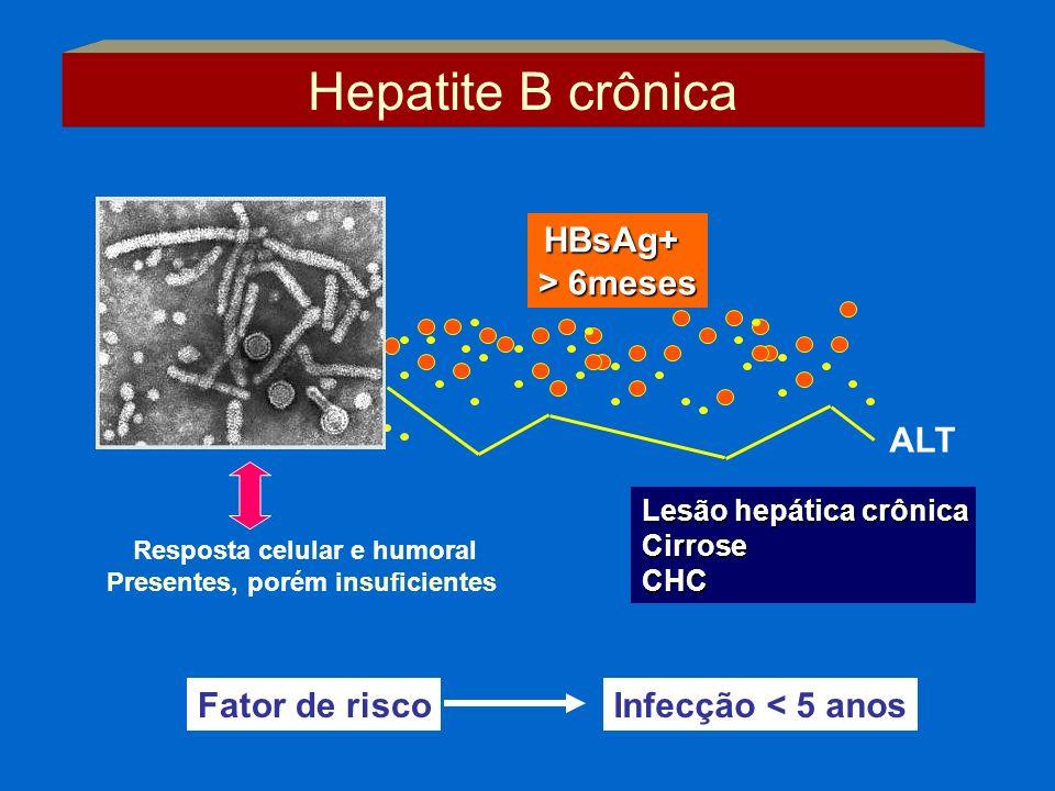 Resposta celular e humoral Presentes, porém insuficientes HBsAg+ > 6meses ALT Infecção < 5 anosFator de risco Lesão hepática crônica CirroseCHC Hepati