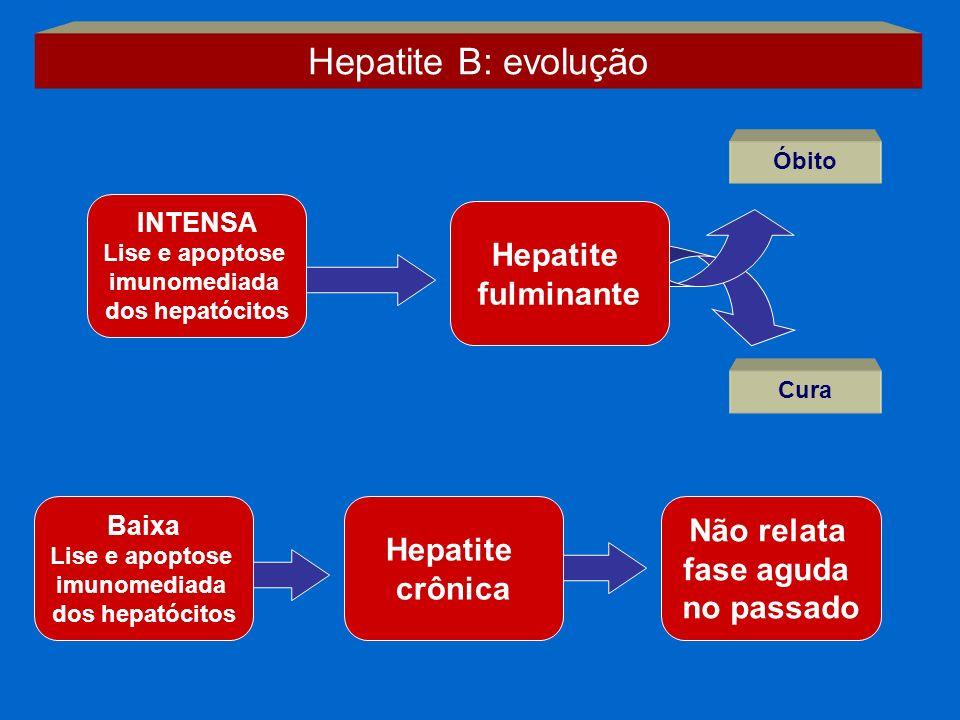 Hepatite B: evolução INTENSA Lise e apoptose imunomediada dos hepatócitos Cura Hepatite fulminante Óbito Hepatite crônica Não relata fase aguda no pas