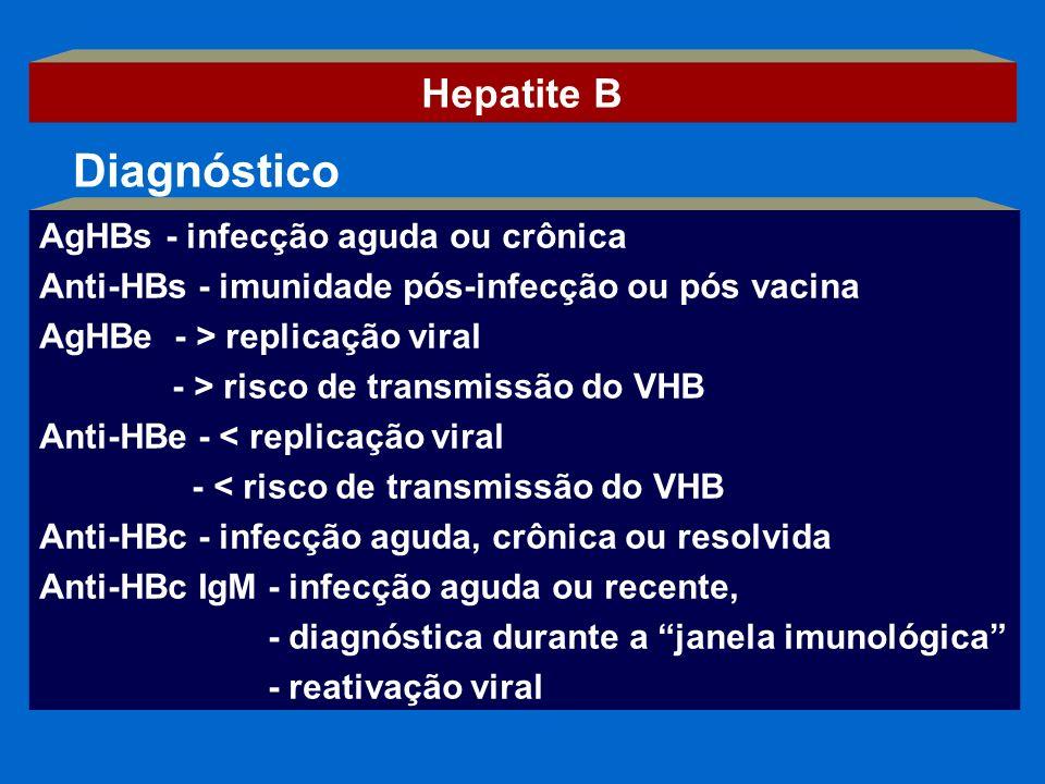 AgHBs - infecção aguda ou crônica Anti-HBs - imunidade pós-infecção ou pós vacina AgHBe - > replicação viral - > risco de transmissão do VHB Anti-HBe