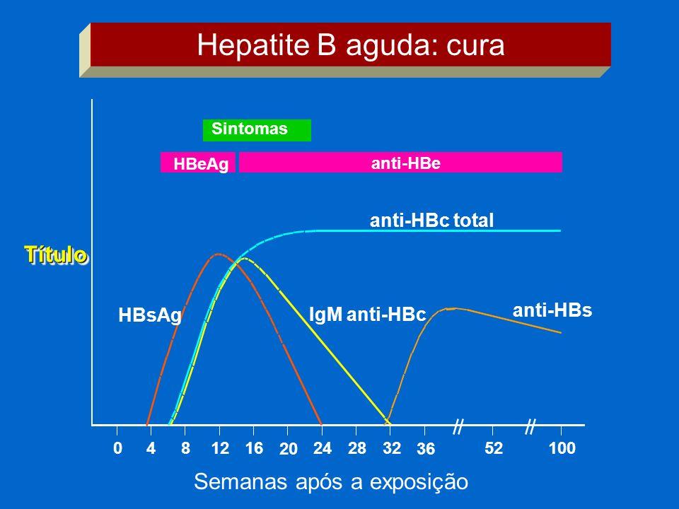 TítuloTítulo Sintomas HBeAg anti-HBe anti-HBc total IgM anti-HBc anti-HBs HBsAg 0481216 20 242832 36 52100 Hepatite B aguda: cura Semanas após a expos