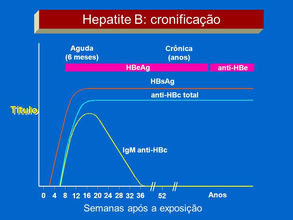 IgM anti-HBc anti-HBc total HBsAg Aguda (6 meses) HBeAg Crônica (anos) anti-HBe 048 12 16202428 32 36 52 Anos Hepatite B: cronificação Semanas após a