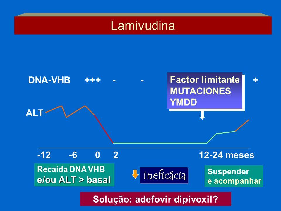 -12 -6 0 2 12-24 meses ALT DNA-VHB+++--+ Factor limitante MUTACIONES YMDD Factor limitante MUTACIONES YMDD Lamivudina Suspender e acompanhar Recaída D