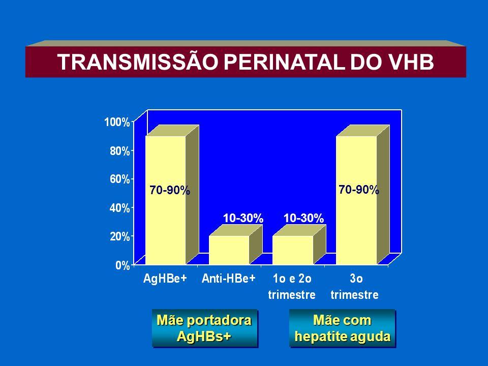 Mãe portadora AgHBs+ Mãe com hepatite aguda 70-90% 10-30% 70-90% TRANSMISSÃO PERINATAL DO VHB