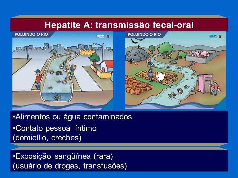 Alimentos ou água contaminados Contato pessoal íntimo (domicílio, creches) Hepatite A: transmissão fecal-oral Exposição sangüínea (rara) (usuário de d
