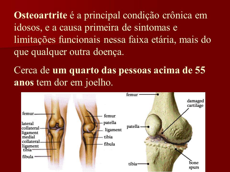 Osteoartrite é a principal condição crônica em idosos, e a causa primeira de sintomas e limitações funcionais nessa faixa etária, mais do que qualquer
