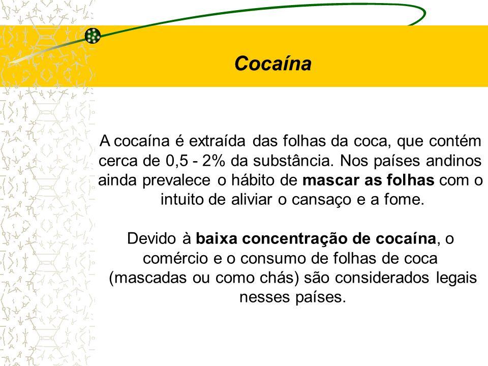 Cocaína A cocaína é extraída das folhas da coca, que contém cerca de 0,5 - 2% da substância. Nos países andinos ainda prevalece o hábito de mascar as