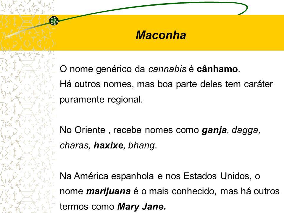 O nome genérico da cannabis é cânhamo. Há outros nomes, mas boa parte deles tem caráter puramente regional. No Oriente, recebe nomes como ganja, dagga