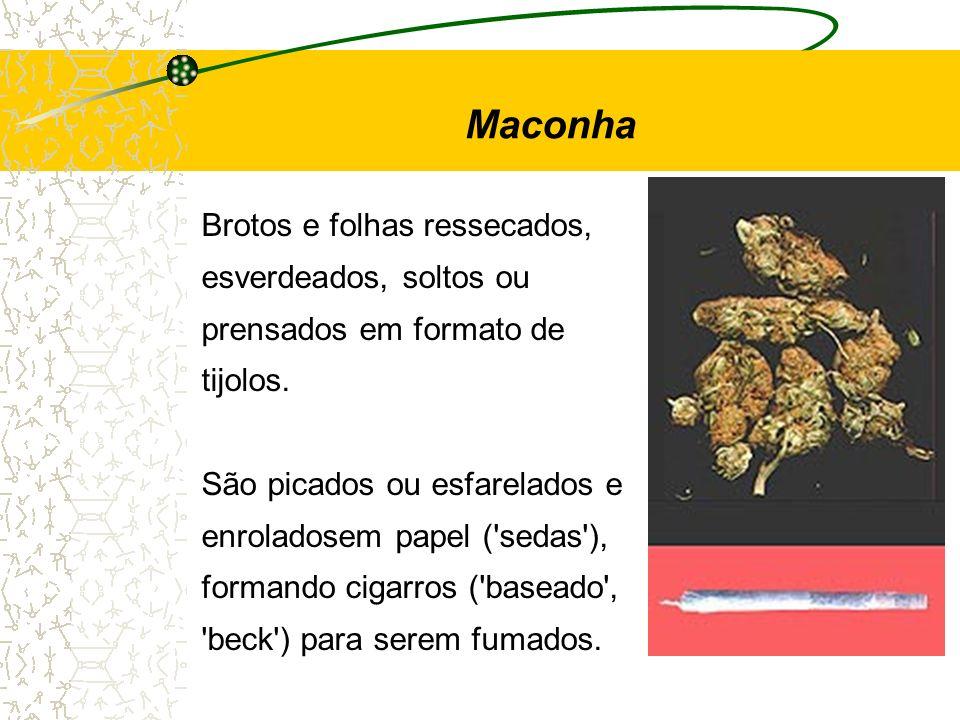 Brotos e folhas ressecados, esverdeados, soltos ou prensados em formato de tijolos. São picados ou esfarelados e enroladosem papel ('sedas'), formando