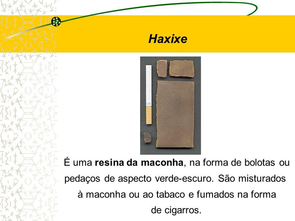 Haxixe É uma resina da maconha, na forma de bolotas ou pedaços de aspecto verde-escuro. São misturados à maconha ou ao tabaco e fumados na forma de ci