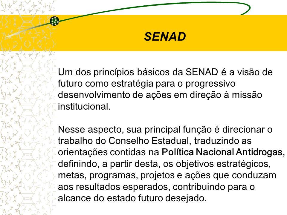SENAD Um dos princípios básicos da SENAD é a visão de futuro como estratégia para o progressivo desenvolvimento de ações em direção à missão instituci