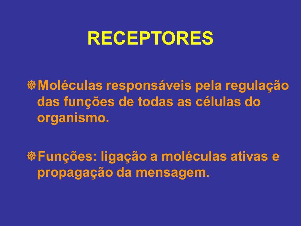 RECEPTORES Moléculas responsáveis pela regulação das funções de todas as células do organismo. Funções: ligação a moléculas ativas e propagação da men