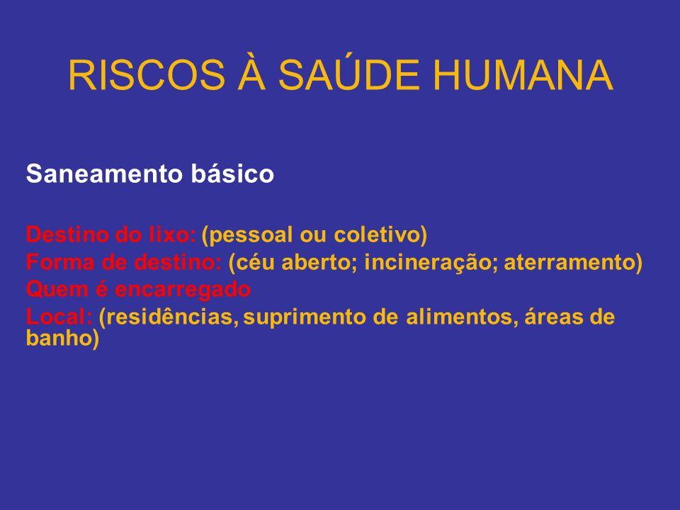 RISCOS À SAÚDE HUMANA Saneamento básico Destino do lixo: (pessoal ou coletivo) Forma de destino: (céu aberto; incineração; aterramento) Quem é encarre