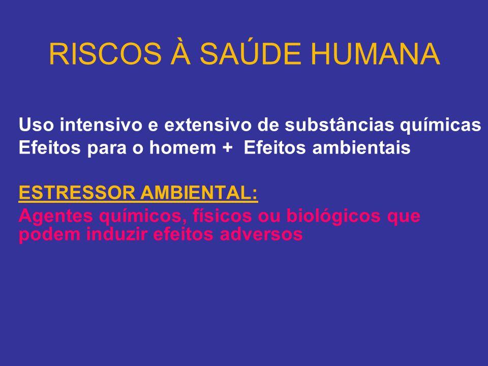 RISCOS À SAÚDE HUMANA Uso intensivo e extensivo de substâncias químicas Efeitos para o homem + Efeitos ambientais ESTRESSOR AMBIENTAL: Agentes químico