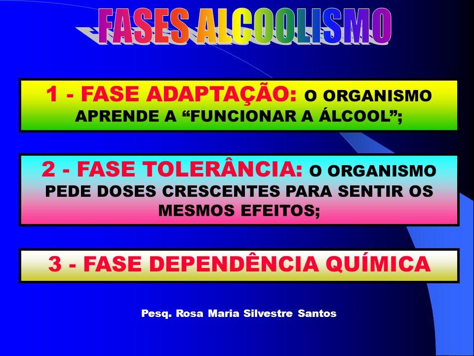 1 - FASE ADAPTAÇÃO: O ORGANISMO APRENDE A FUNCIONAR A ÁLCOOL; 2 - FASE TOLERÂNCIA: O ORGANISMO PEDE DOSES CRESCENTES PARA SENTIR OS MESMOS EFEITOS; 3