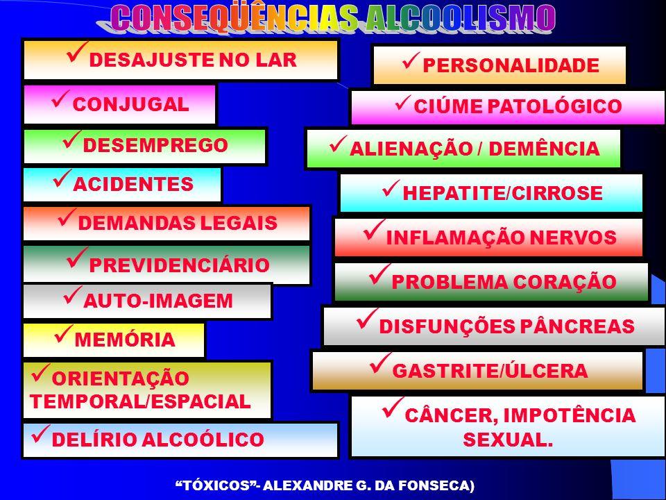 D ESAJUSTE NO LAR A CIDENTES CONJUGAL P REVIDENCIÁRIO CIÚME PATOLÓGICO ALIENAÇÃO / DEMÊNCIA D ESEMPREGO D EMANDAS LEGAIS HEPATITE/CIRROSE A UTO-IMAGEM