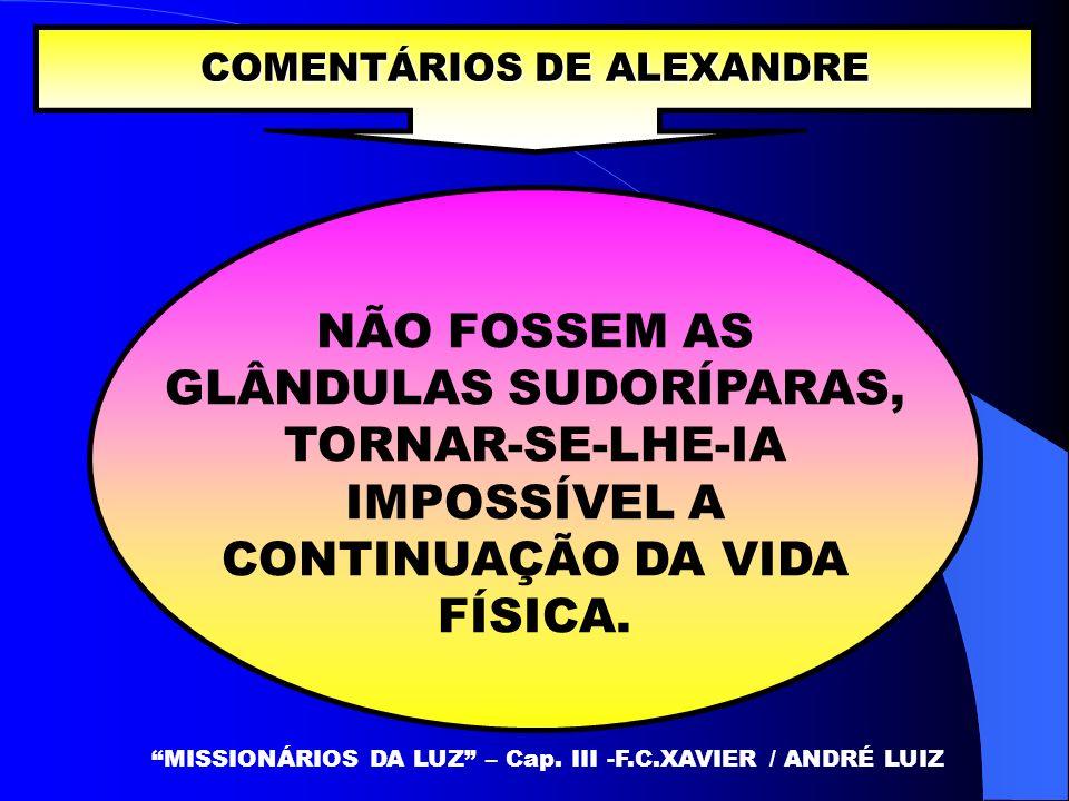 NÃO FOSSEM AS GLÂNDULAS SUDORÍPARAS, TORNAR-SE-LHE-IA IMPOSSÍVEL A CONTINUAÇÃO DA VIDA FÍSICA. COMENTÁRIOS DE ALEXANDRE MISSIONÁRIOS DA LUZ – Cap. III