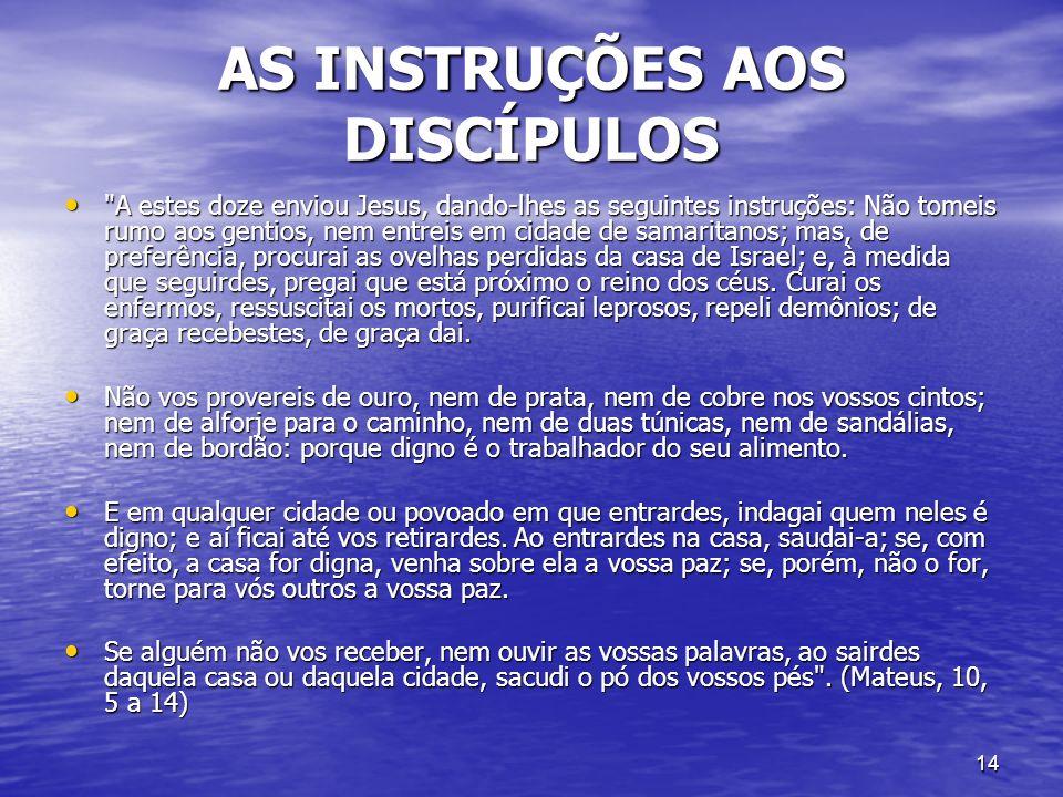 14 AS INSTRUÇÕES AOS DISCÍPULOS