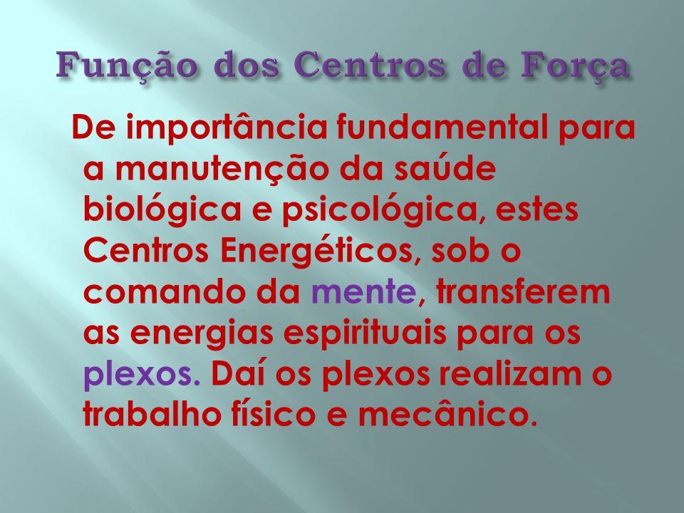 De importância fundamental para a manutenção da saúde biológica e psicológica, estes Centros Energéticos, sob o comando da mente, transferem as energi