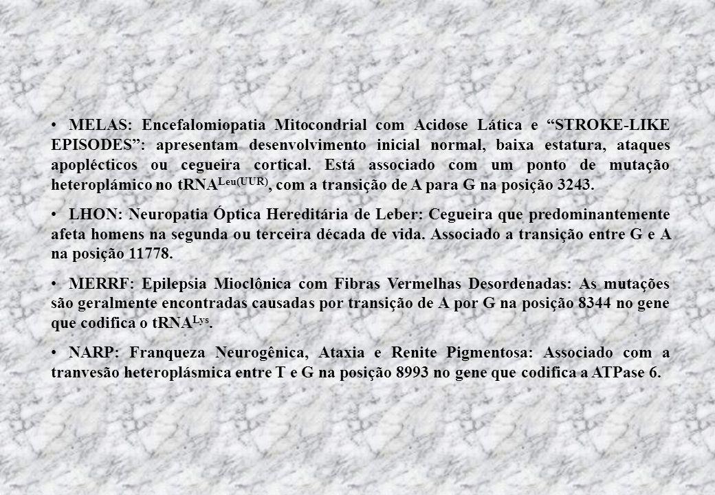 MELAS: Encefalomiopatia Mitocondrial com Acidose Lática e STROKE-LIKE EPISODES: apresentam desenvolvimento inicial normal, baixa estatura, ataques apo