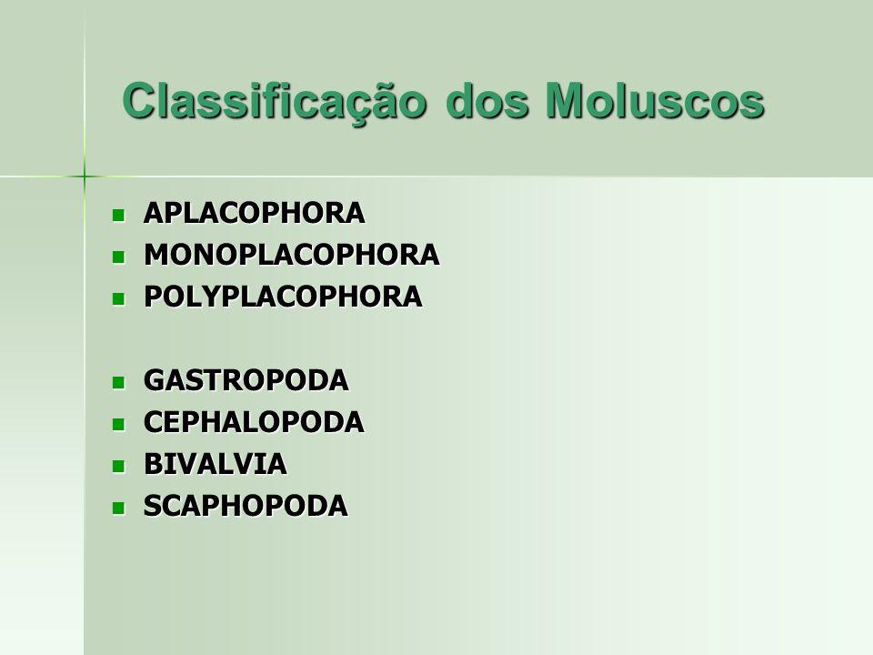 Classificação dos Moluscos APLACOPHORA APLACOPHORA MONOPLACOPHORA MONOPLACOPHORA POLYPLACOPHORA POLYPLACOPHORA GASTROPODA GASTROPODA CEPHALOPODA CEPHA