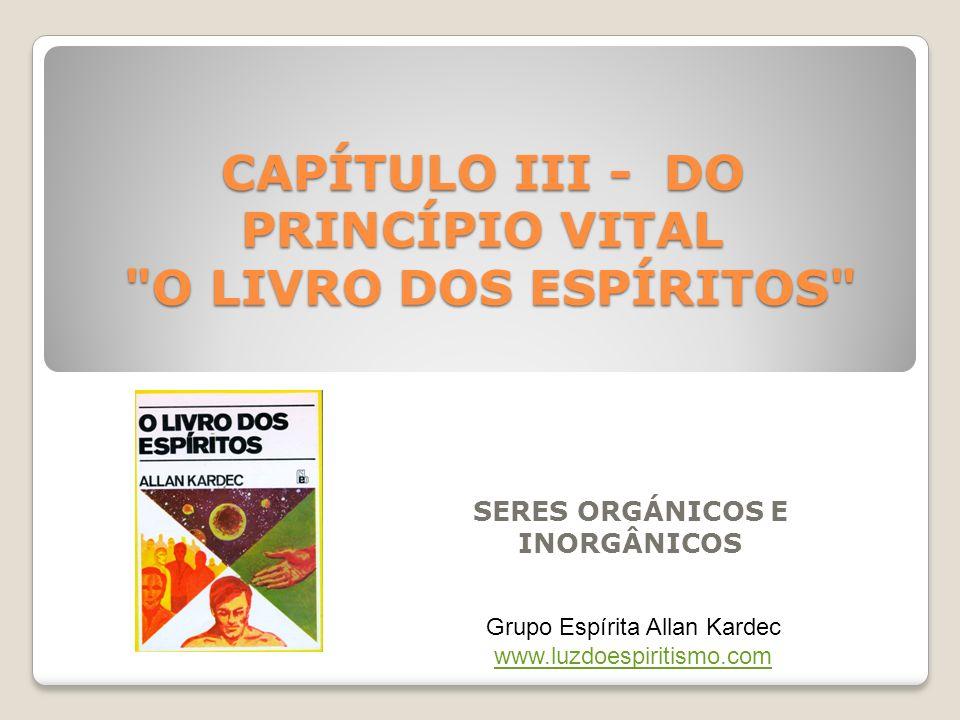 CAPÍTULO III - DO PRINCÍPIO VITAL