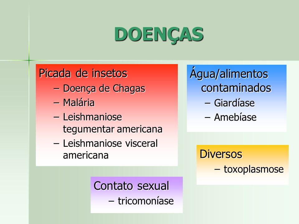 DOENÇAS Picada de insetos –Doença de Chagas –Malária –Leishmaniose tegumentar americana –Leishmaniose visceral americana Diversos –toxoplasmose Água/a