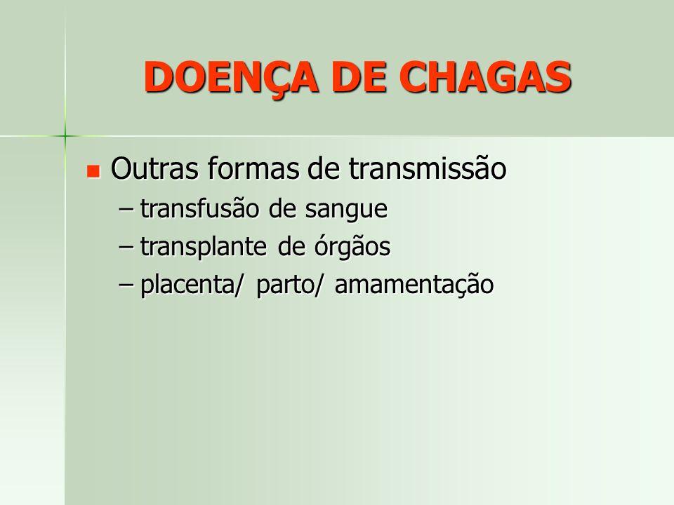 Outras formas de transmissão Outras formas de transmissão –transfusão de sangue –transplante de órgãos –placenta/ parto/ amamentação