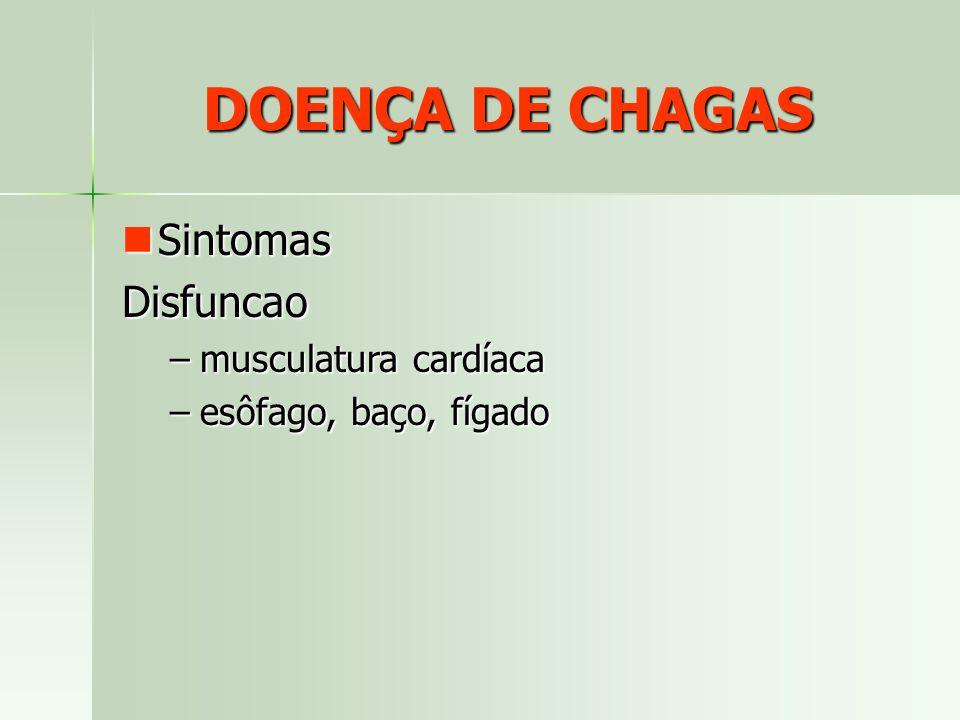 DOENÇA DE CHAGAS Sintomas SintomasDisfuncao –musculatura cardíaca –esôfago, baço, fígado