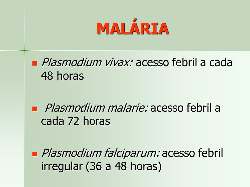 MALÁRIA Plasmodium vivax: acesso febril a cada 48 horas Plasmodium vivax: acesso febril a cada 48 horas Plasmodium malarie: acesso febril a cada 72 ho