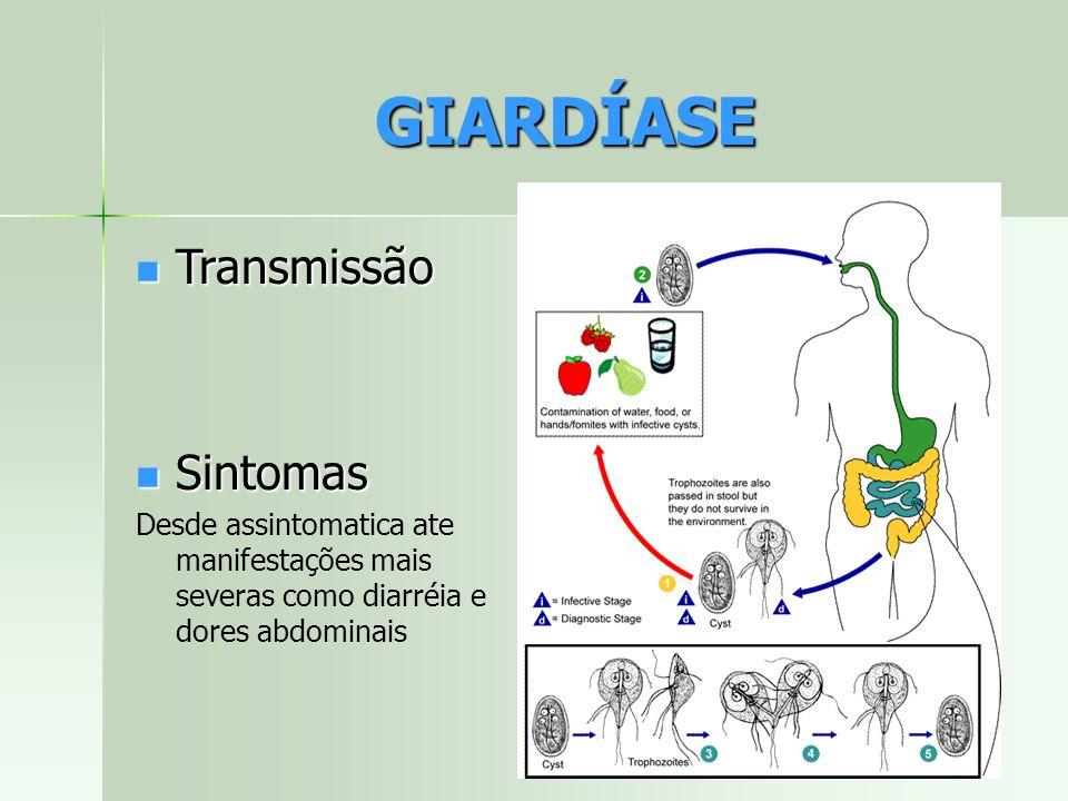 Transmissão Transmissão Sintomas Sintomas Desde assintomatica ate manifestações mais severas como diarréia e dores abdominais GIARDÍASE