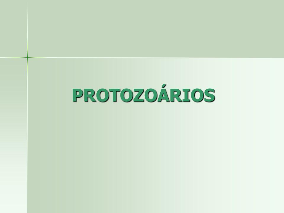 PROTOZOÁRIOS Isolados ou colônias Isolados ou colônias Vida livre ou associados a outros organismos Vida livre ou associados a outros organismos Locomoção Locomoção –Pseudópodes (AMEBÓIDES)- antigo Sarcodina –Flagelos (FLAGELADOS) antigo Flagellata –Cílios (CILIADOS)- atual e antigo Ciliophora –Flexões do corpo ou deslizamento (ESPOROZOÁRIOS)- antigo Sporozoa