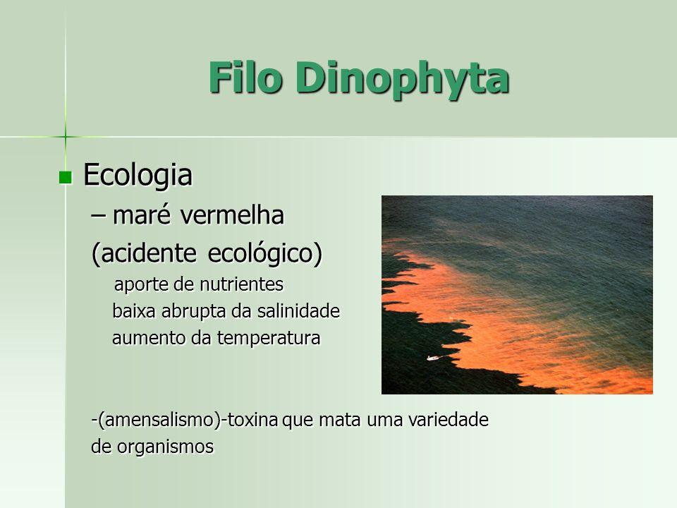 Ecologia Ecologia –maré vermelha (acidente ecológico) aporte de nutrientes aporte de nutrientes baixa abrupta da salinidade aumento da temperatura -(a