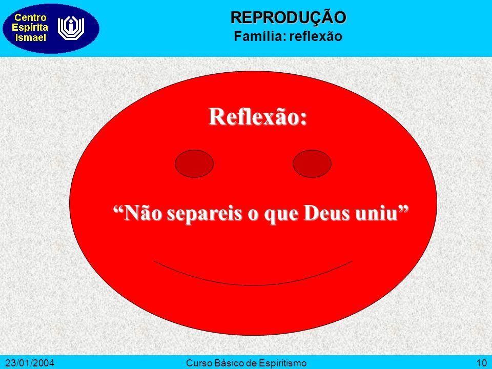 23/01/2004Curso Básico de Espiritismo10 Reflexão: Não separeis o que Deus uniu REPRODUÇÃO Família: reflexão