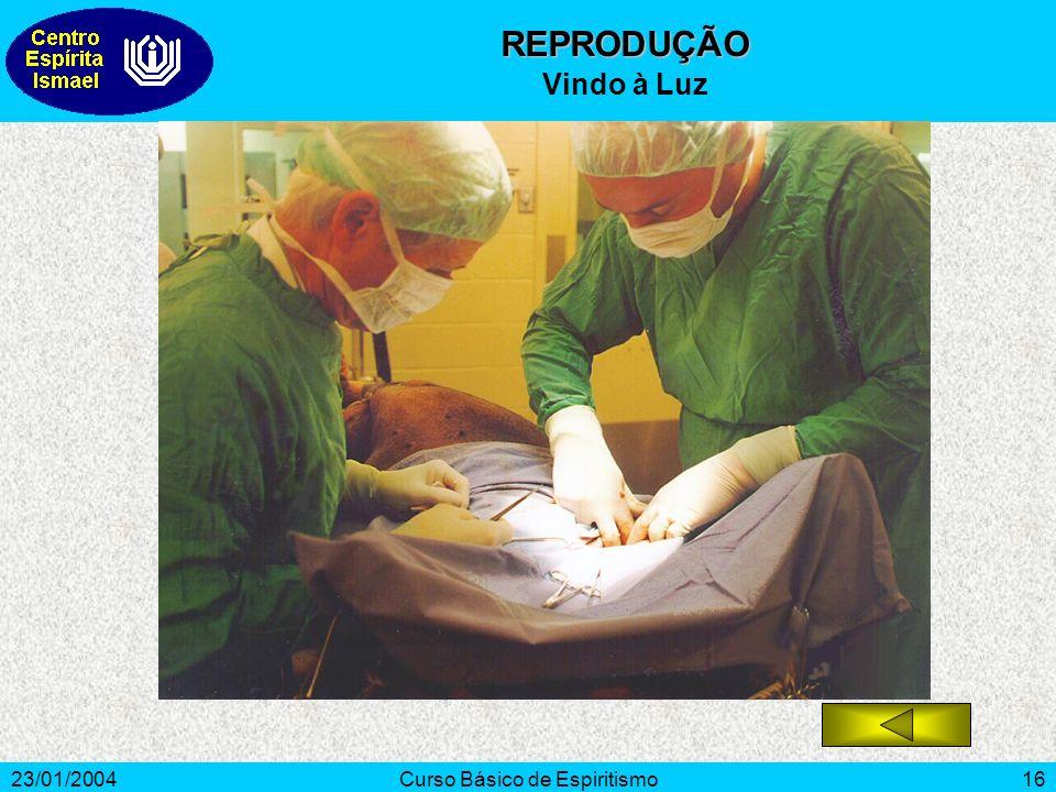 23/01/2004Curso Básico de Espiritismo16 REPRODUÇÃO Vindo à Luz
