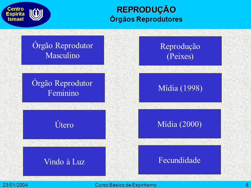 23/01/2004Curso Básico de Espiritismo6 Órgão Reprodutor Masculino Órgão Reprodutor Feminino Útero Reprodução (Peixes) Mídia (1998) Vindo à Luz Mídia (