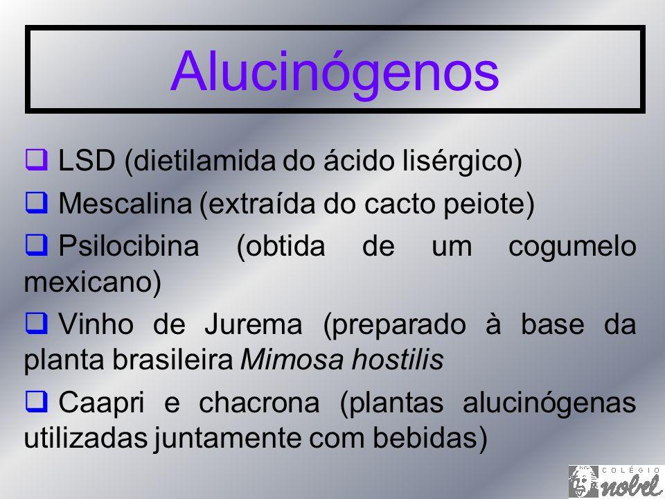 Alucinógenos LSD (dietilamida do ácido lisérgico) Mescalina (extraída do cacto peiote) Psilocibina (obtida de um cogumelo mexicano) Vinho de Jurema (p