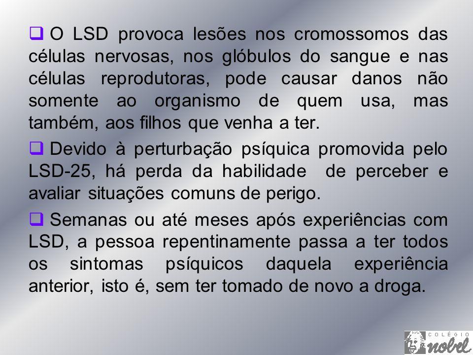 O LSD provoca lesões nos cromossomos das células nervosas, nos glóbulos do sangue e nas células reprodutoras, pode causar danos não somente ao organis