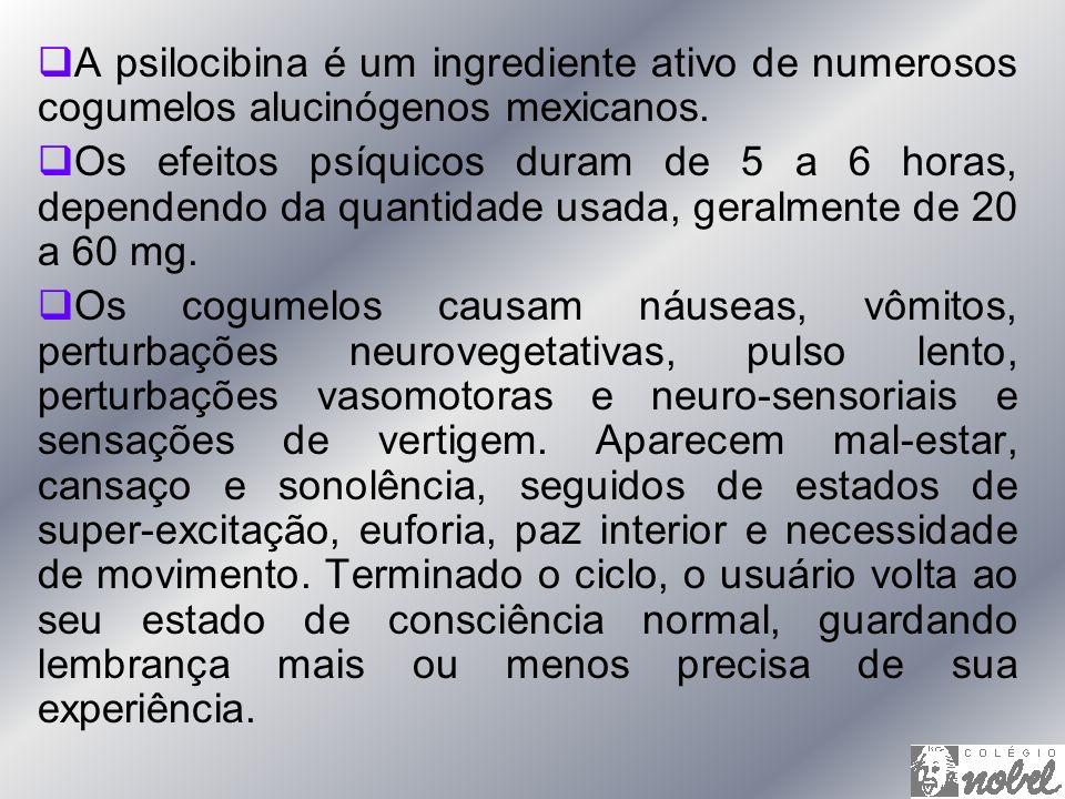 A psilocibina é um ingrediente ativo de numerosos cogumelos alucinógenos mexicanos. Os efeitos psíquicos duram de 5 a 6 horas, dependendo da quantidad