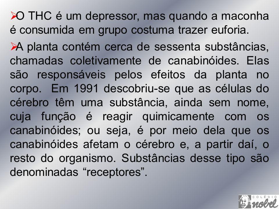 O THC é um depressor, mas quando a maconha é consumida em grupo costuma trazer euforia. A planta contém cerca de sessenta substâncias, chamadas coleti