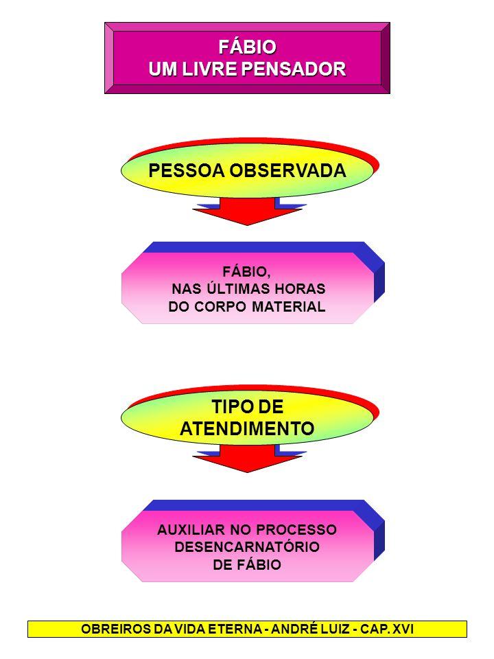 O REENCONTRO COM A ESPOSA - A EX-CONSORTE, SEMELHAVA-SE A UM FANTASMA - PENETROU NO RECINTO, QUASE ARRASTANDO-SE.