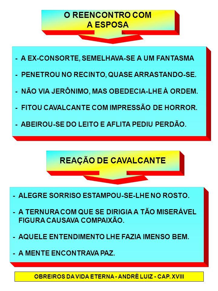 O REENCONTRO COM A ESPOSA - A EX-CONSORTE, SEMELHAVA-SE A UM FANTASMA - PENETROU NO RECINTO, QUASE ARRASTANDO-SE. - NÃO VIA JERÔNIMO, MAS OBEDECIA-LHE