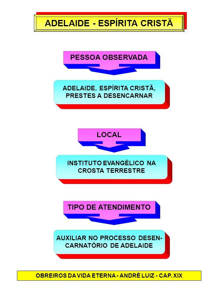 ADELAIDE - ESPÍRITA CRISTÃ PESSOA OBSERVADA ADELAIDE, ESPÍRITA CRISTÃ, PRESTES A DESENCARNAR LOCAL INSTITUTO EVANGÉLICO NA CROSTA TERRESTRE TIPO DE AT
