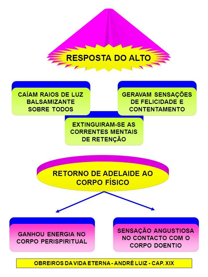EXTINGUIRAM-SE AS CORRENTES MENTAIS DE RETENÇÃO GERAVAM SENSAÇÕES DE FELICIDADE E CONTENTAMENTO OBREIROS DA VIDA ETERNA - ANDRÉ LUIZ - CAP. XIX RESPOS