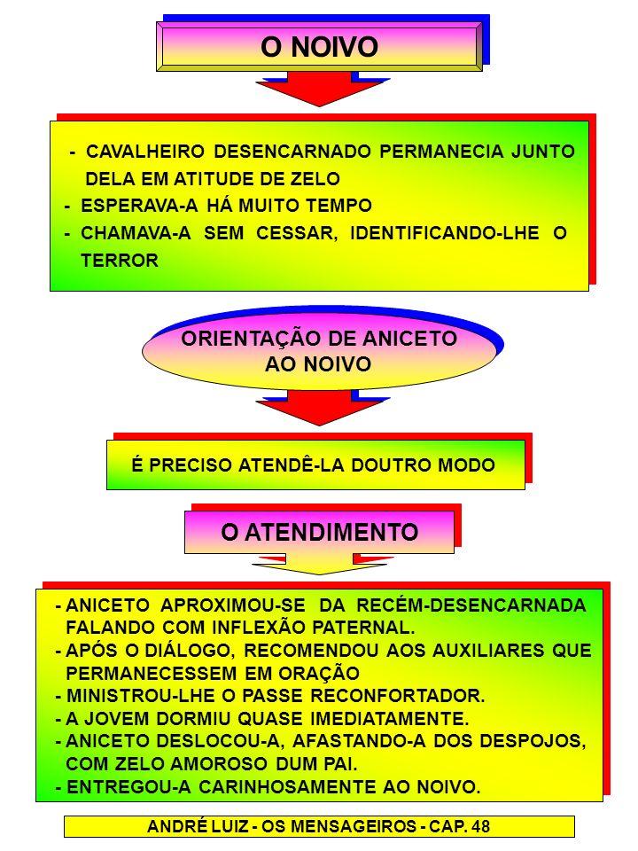 O NOIVO - CAVALHEIRO DESENCARNADO PERMANECIA JUNTO DELA EM ATITUDE DE ZELO - ESPERAVA-A HÁ MUITO TEMPO - CHAMAVA-A SEM CESSAR, IDENTIFICANDO-LHE O TER