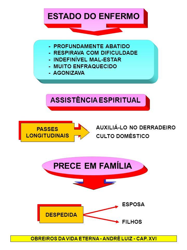DESCRIÇÃO DO PROCESSO DESENCARNATÓRIO - JERÔNIMO APLICOU PASSES ANESTESIANTES - DETEVE-SE EM COMPLICADA OPERAÇÃO MAGNÉTICA SOBRE OS ÓRGÃOS DA RESPIRAÇÃO - AÇÃO MAGNÉTICA SOBRE O PLEXO SOLAR, CORAÇÃO, E CÉREBRO - PROSSEGUIU SEPARANDO O ORGANISMO PERISPIRI- TUAL DO CORPO FÍSICO - UMA HORA APÓS A DESENCARNAÇÃO FOI CORTADO O CORDÃO LUMINOSO - RECÉM-LIBERTO, FÁBIO, DESCANSAVA, SONOLENTO, SEM CONSCIÊNCIA DA SITUAÇÃO REFLEXÃO MORRE A FORMA, MAS REBRILHA A ALMA - ESSE GNOMO DE LUZ; E O QUE É ESSA EXISTÊNCIA DO CORPO - UM SOPRO - PERANTE A EXISTÊNCIA DA ALMA - A ETERNIDADE .