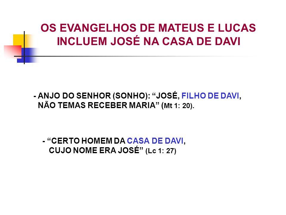 OS EVANGELHOS DE MATEUS E LUCAS INCLUEM JOSÉ NA CASA DE DAVI - ANJO DO SENHOR (SONHO): JOSÉ, FILHO DE DAVI, NÃO TEMAS RECEBER MARIA ( Mt 1: 20). - CER