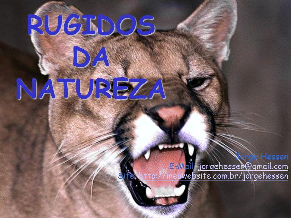 RUGIDOS DA NATUREZA Jorge Hessen E-Mail: jorgehessen@gmail.com Site: http://meuwebsite.com.br/jorgehessen