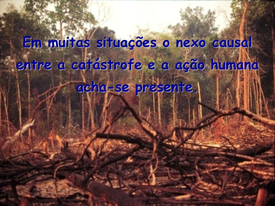 Em muitas situações o nexo causal entre a catástrofe e a ação humana acha-se presente.
