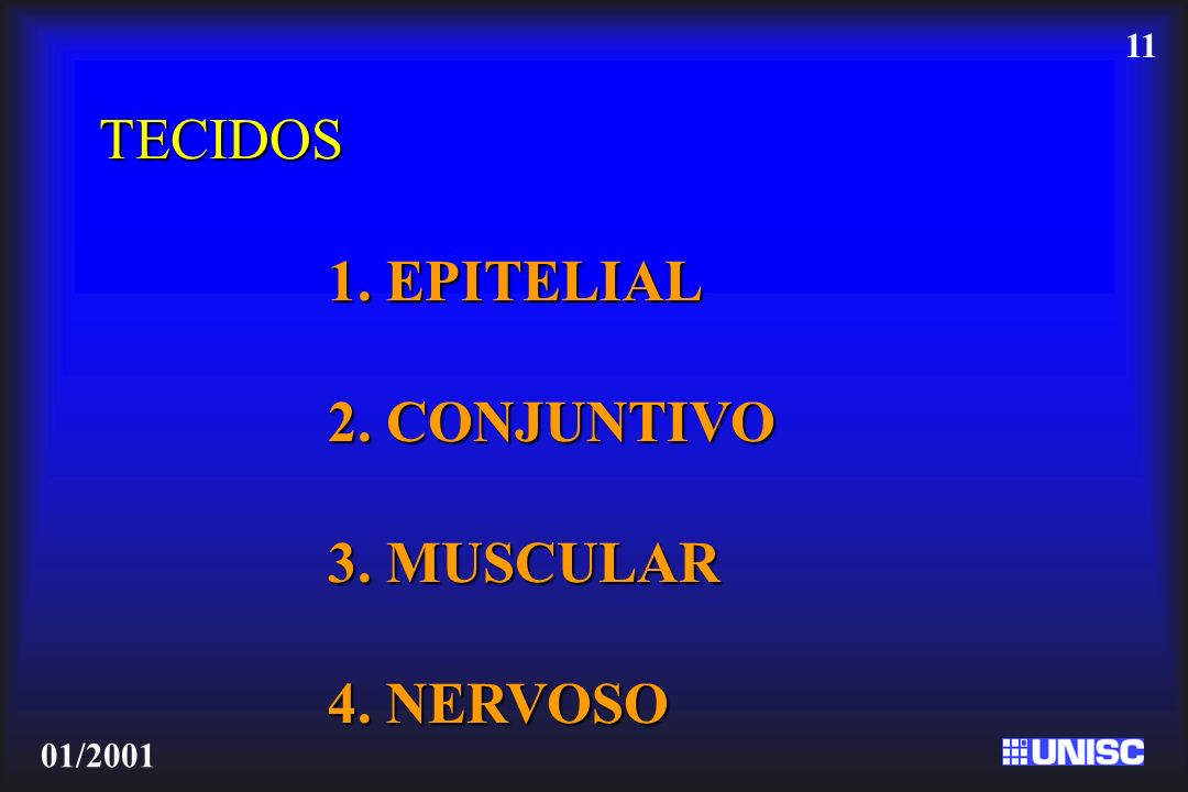 11 01/2001 TECIDOS 1. EPITELIAL 2. CONJUNTIVO 3. MUSCULAR 4. NERVOSO